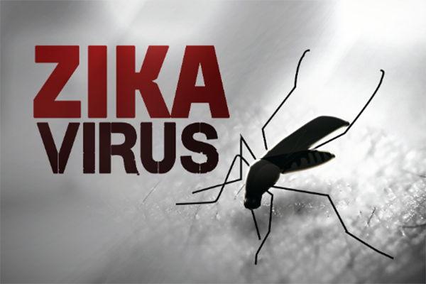 Refuerzan campaña de prevención contra el mosquito transmisor del Zika