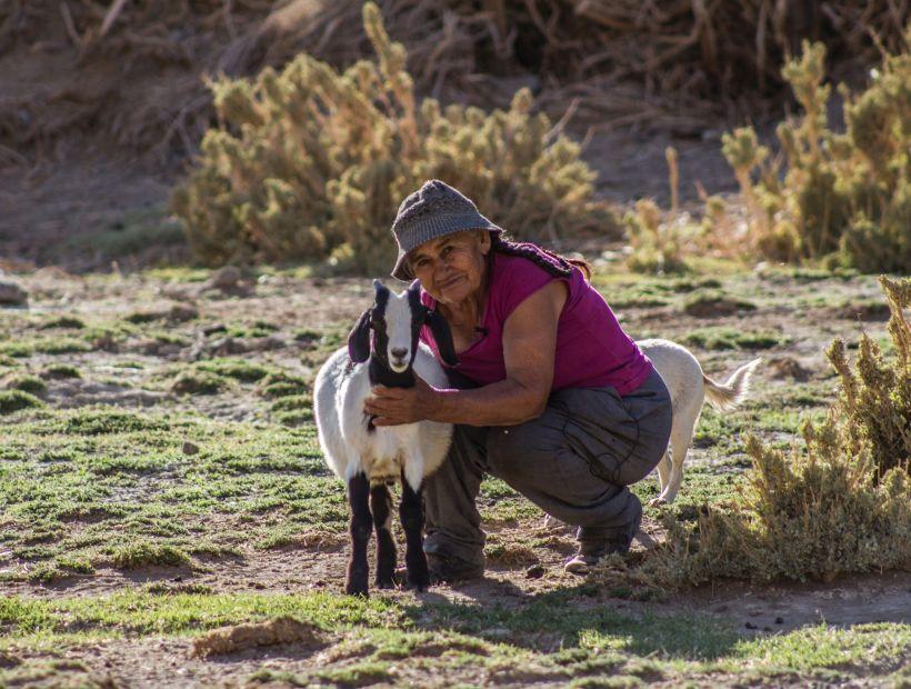 Indígenas de Atacama participaron en diálogos sobre cambio climático