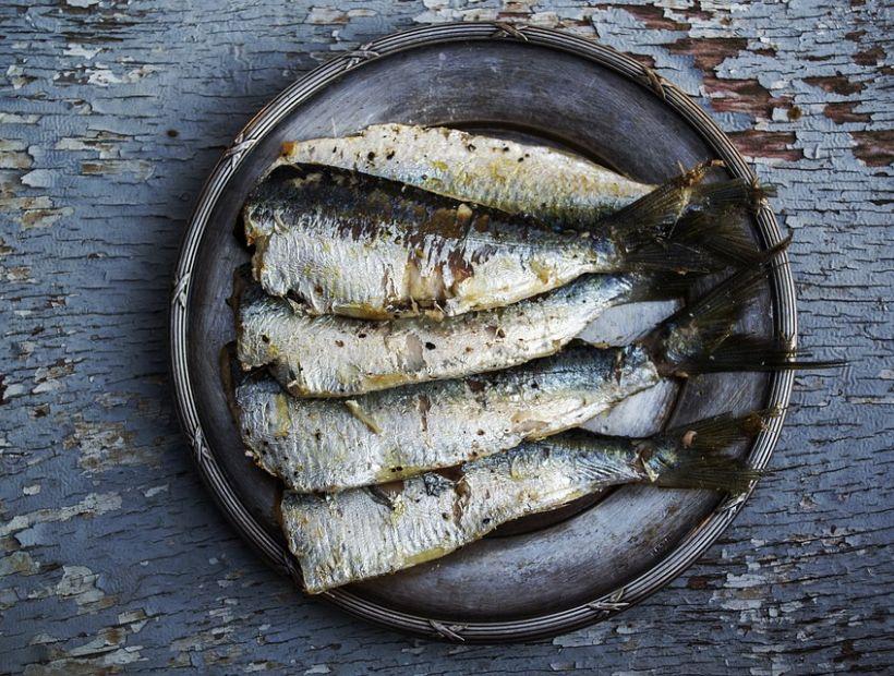 Los ácidos grasos omega-3 reducen las cicatrices y cuidan tu corazón