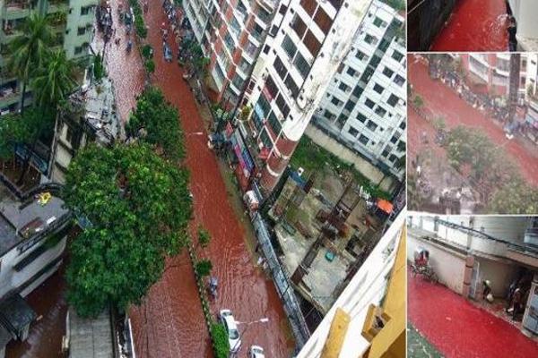 Ríos de sangre animal en Dacca por una celebración musulmana