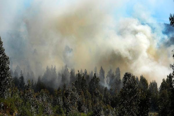 Recursos humanos y aereos se suman al combate de incendios forestales en la zona central