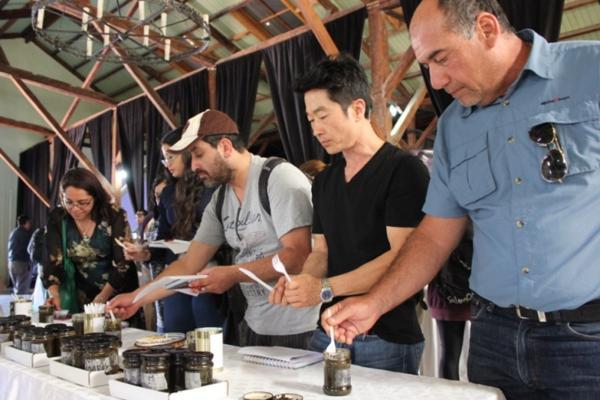 Proyecto de producción de alimentos en base a algas pardas desarrolla exitosa degustación