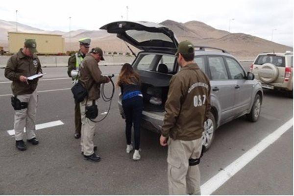 Operativos del O.S.7 Atacama permitio incautar mas de 12 mil dosis de droga