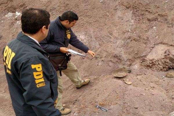 PDI ha recuperado mas de 5 mil 500 piezas paleontologicas en la Region de Atacama