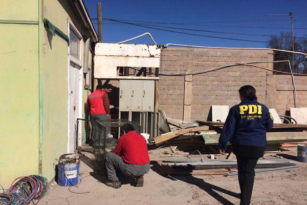 PDI rescata perro abandonado en domicilio de Copiapo