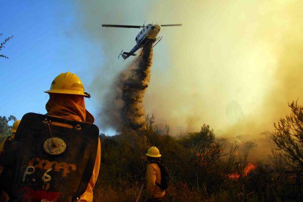 Cinco regiones del país presentan riesgo para la generación de incendios forestales