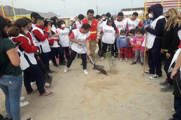 Estudiantes de Chañaral, Conaf e Injuv plantan 68 árboles en plazoletas del sector Aeropuerto
