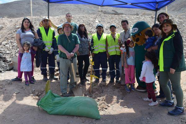 Vecinos de Villa Los Minerales reciben plantación de árboles de Conaf