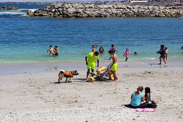 Declaran alerta preventiva por altas temperaturas en la Región de Antofagasta