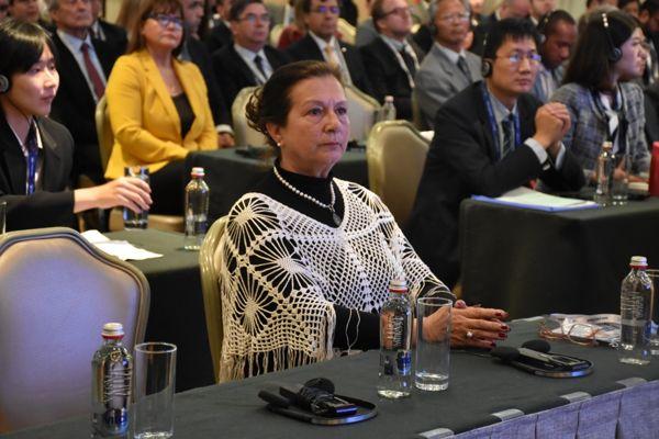 Gobernadora del Huasco Nelly Gale Bou: