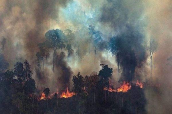 Brasil acepta la ayuda de Gran Bretaña por US$ 12 millones contra incendios en el Amazonas