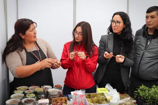 Seremi de Gobierno y directora de Indap reconocieron arte y trabajo de Colla Rosa Flores