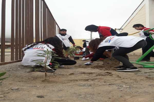 Jóvenes protagonizaron arborización en junta de vecinos afectada por aluvión