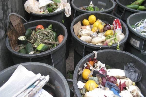 El mundo bota a la basura 1.300 millones de toneladas de comida por año