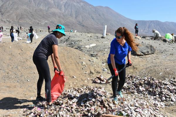 12 toneladas de basura retiraron desde el Parque Nacional Morro Moreno de Antofagasta