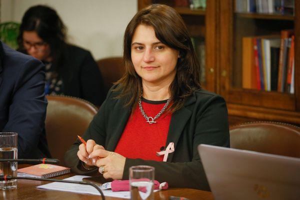 """Diputada Sofía Cid (RN) valora programa de ayuda pro Pymes: """"Es una reacción muy rápida del Gobierno»"""