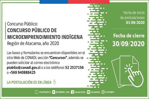 Concurso público de microemprendedores indígenas en Atacama.