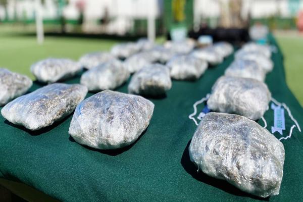Carabineros evita la comercialización de 5 mil dosis de droga en Copiapo