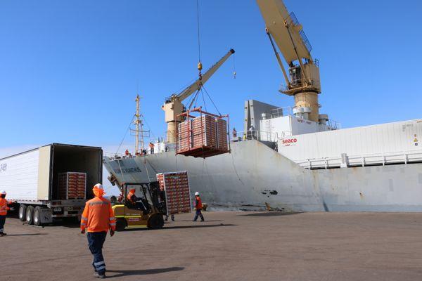 Primer embarque frutícola salió de Caldera