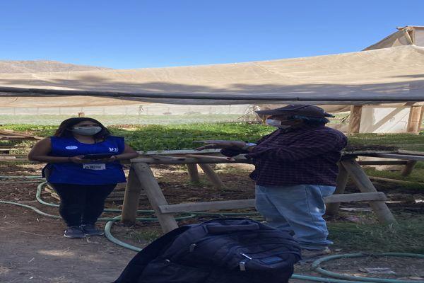 Levantamiento del VIII Censo Nacional Agropecuario y Forestal (CAF) en Atacama
